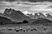 Near Glenorchy
